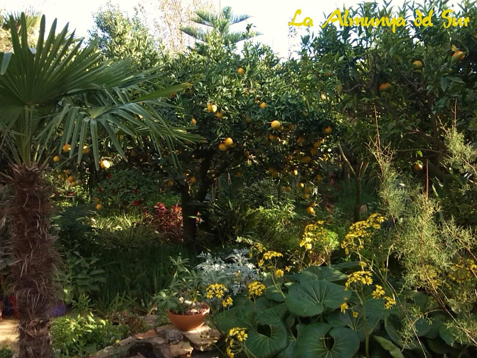 La Almunya del Sur - Botanical gardens