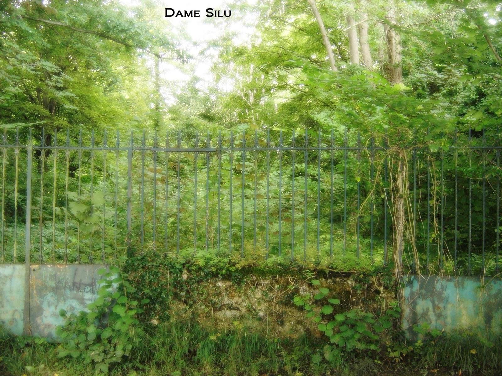 portail jardin en bois