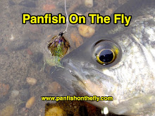 Check Out Panfish On The Fly
