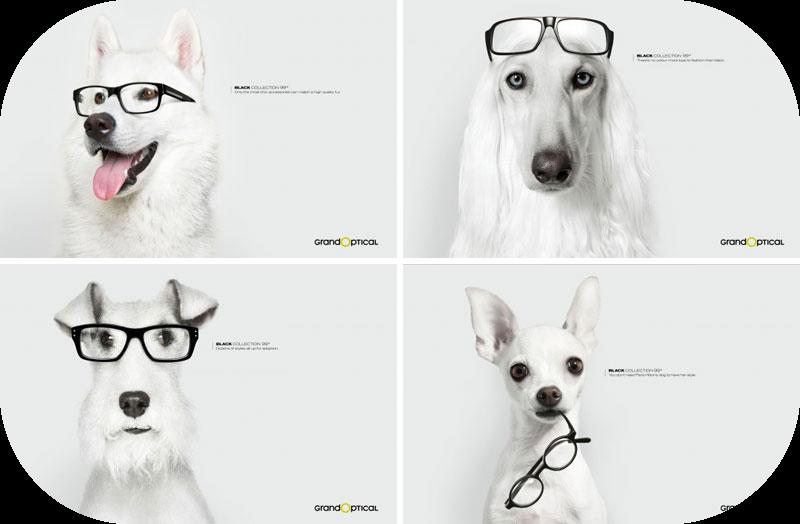 blague lunette