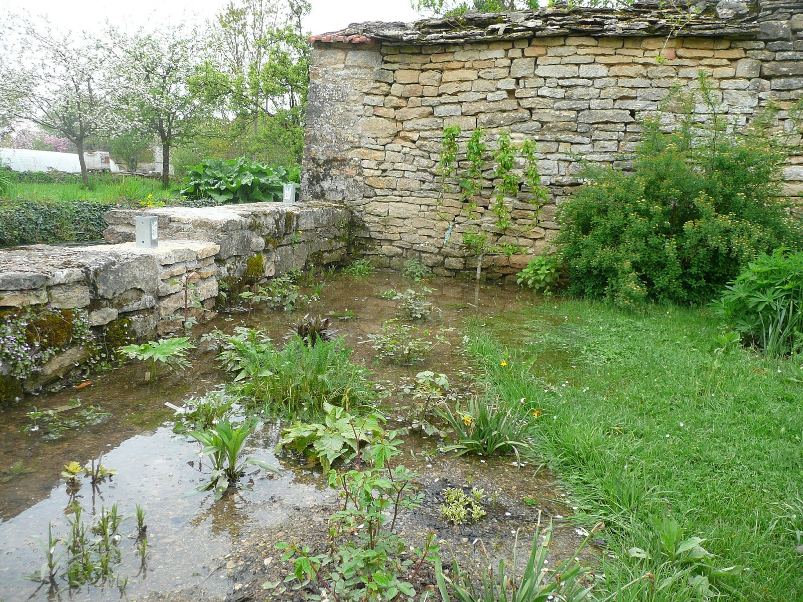 Notre jardin secret espoir for Jardin secret 78