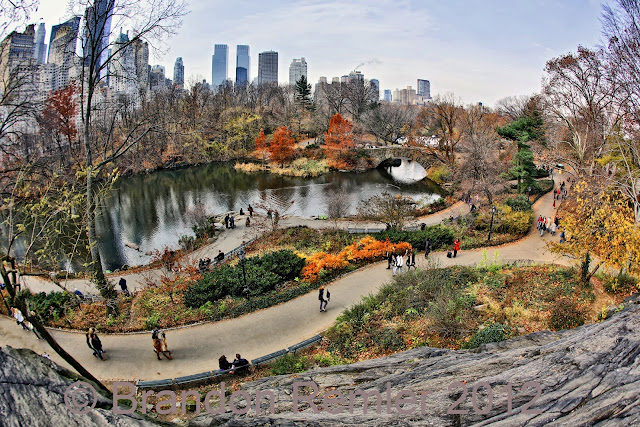 New York City Central Park Photograph