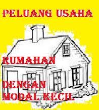 Bisnis Usaha Sampingan