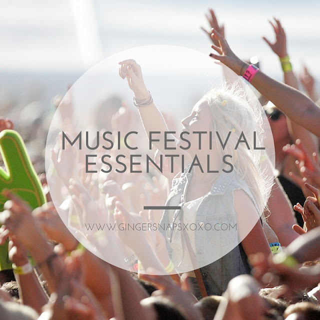 Music Festival India Enchanted Valley Carnival 2015 Essntials FatBOy SLim India