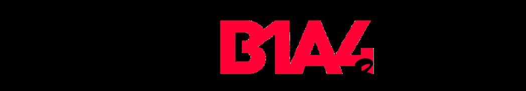 Let's Fly B1A4 Brazil