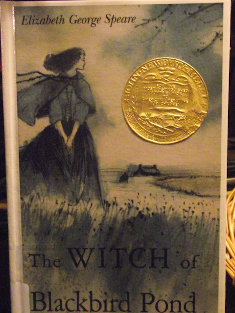 a summary of the book the witch of blackbird pond by elizabeth george speare The witch of blackbird pond by elizabeth george speare on bookbub sixteen-year-old kit tyler is marked by suspicion and disapproval from the moment she arrives on the unfamiliar shores of colonial connecticut in 1687 alone and desperate, she has been forced to leave her beloved home on the.