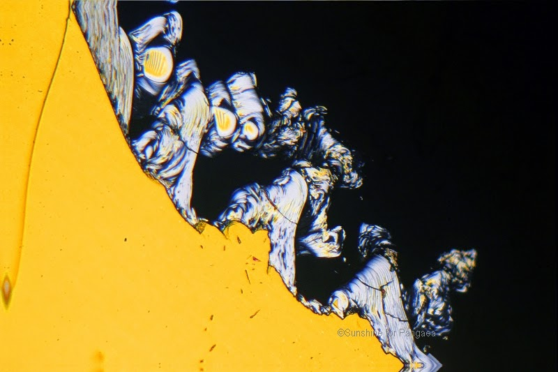Liquid crystals under the microscope