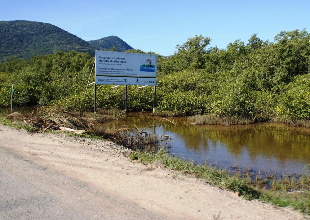 Duplicação da rodovia que leva ao aeroporto Hercílio Luz avança sobre a Reserva Extrativista Marinha do Pirajubaé.