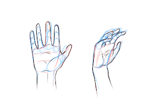 Drawing Hands Step 6