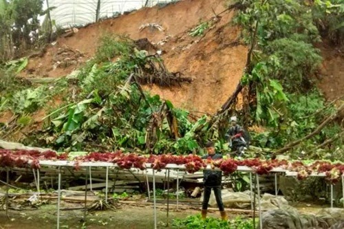 kesan pembalakan haram musnahkan hutan, pencerobohan hutan, hutan botak, penggondolan hutan, lindungi hutan, pencemaran sungai dan alam sekitar kesan pembalakan haram, kemusnahan hutan Malaysia tahun 2014, pembalakan haram punca tanah runtuh dan pencemaran sungai