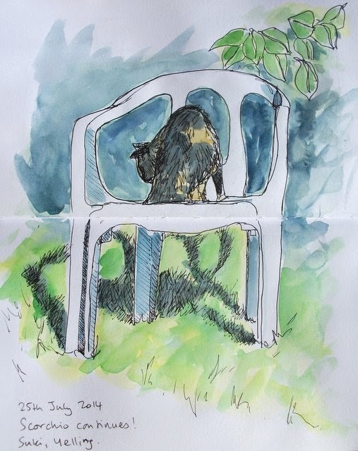 Ink and watercolour cat