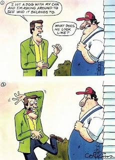 comic i hit a dog with my car what does it look like funny pictures, i hitted a dog, funny comics, funny pictures