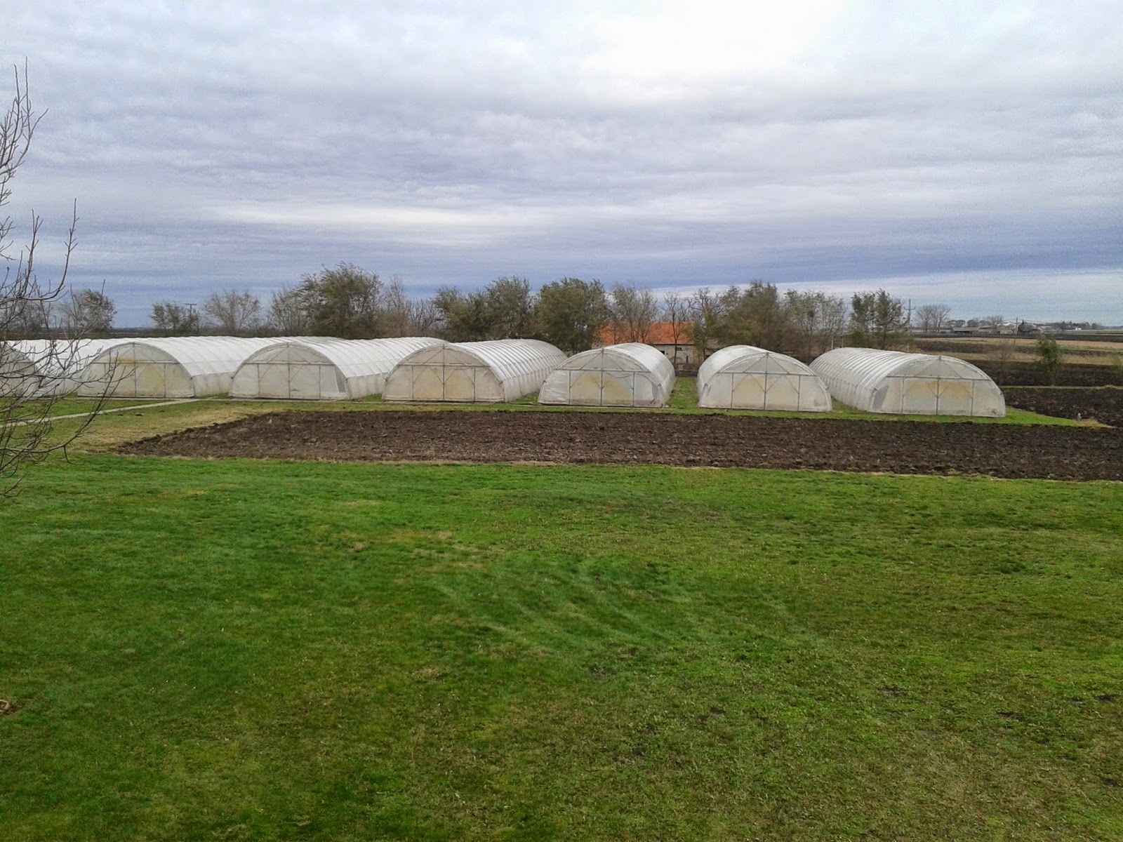 Green houses at Teen Challenge, Serbia