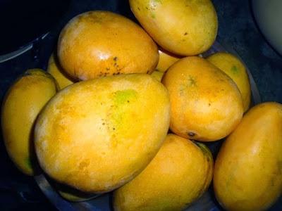 Manggo India