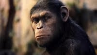 Dawn of the Planet of the Apes Film - Andy Serkis, who played Caesar in the first film, has signed on for the sequel. Director Rupert Wyatt is also expected to return.