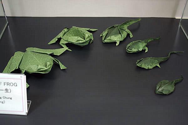 cara membuat origami katak