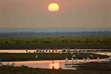 Aves- Moçambique