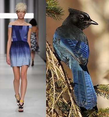 Fashion Designers Influenced By Nature