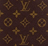 LV-Monogram-Kanvas
