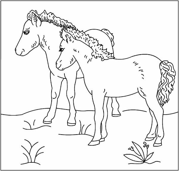 Print Horse Coloring Pages