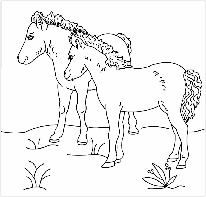 horse with unicorn horse with unicorn horse with unicorn horse with  title=