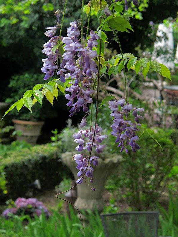 Lost in arles le jardin du quai part two for Le jardin du quai