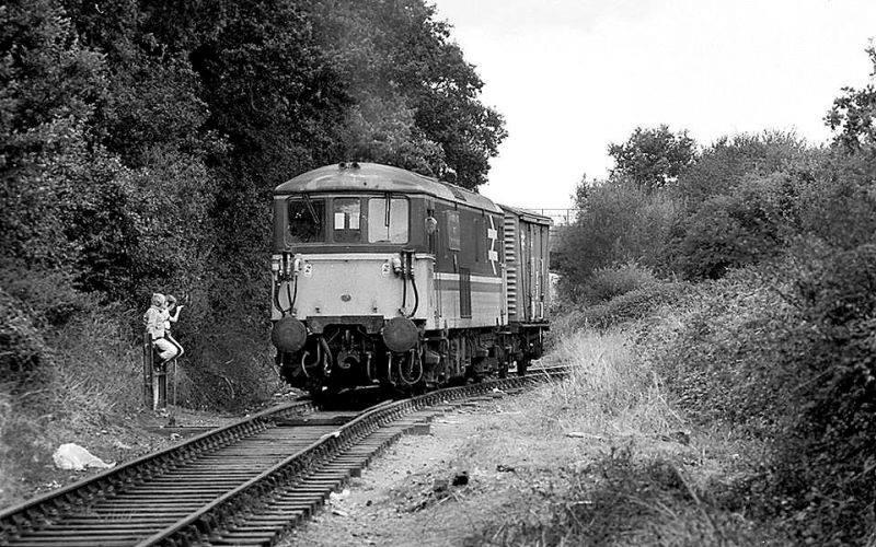 Class 73 at Oakdene Woods 1980s