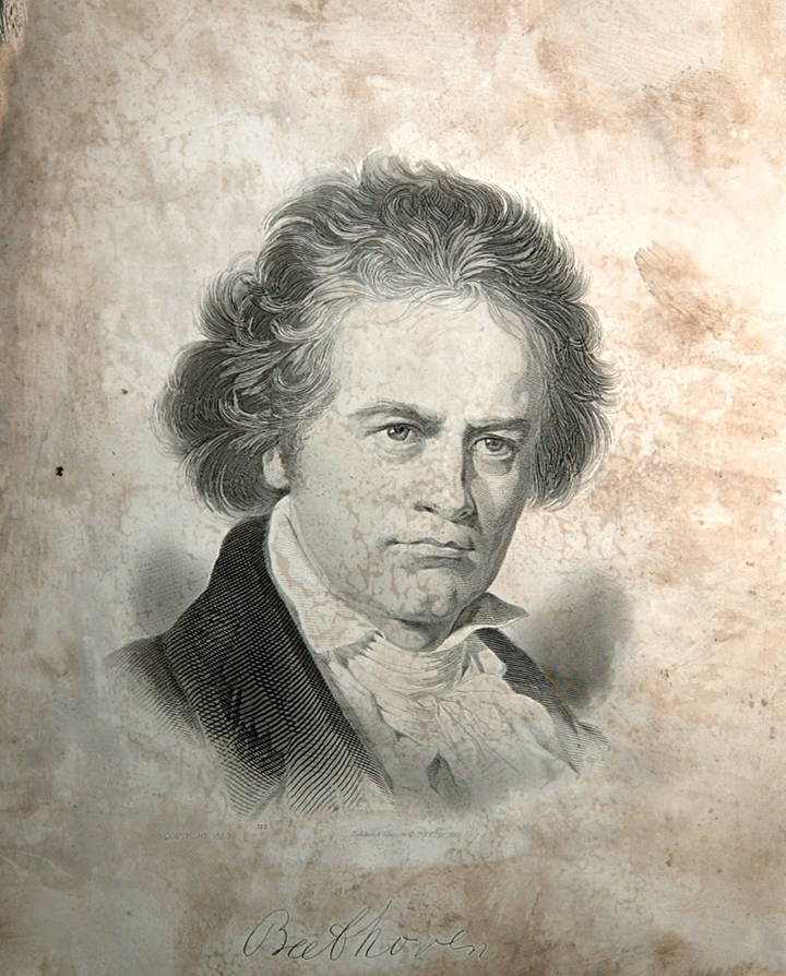 beethoven century essays on composers and themes Classical piano music and literature essay a composer would have a few themes in his work the 19th century composers often embraced cultural horizons.