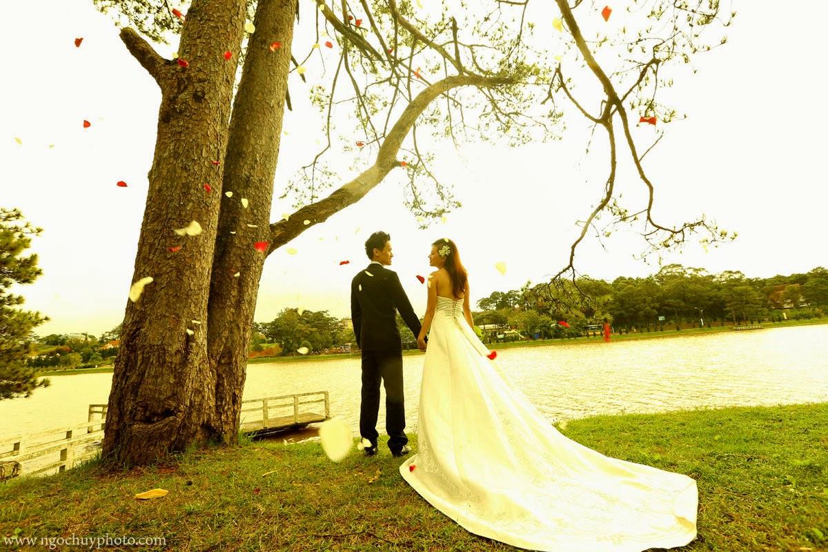 Địa điểm chụp ảnh cưới đẹp ở Đà Lạt ~ Thiên đường mộng mơ4