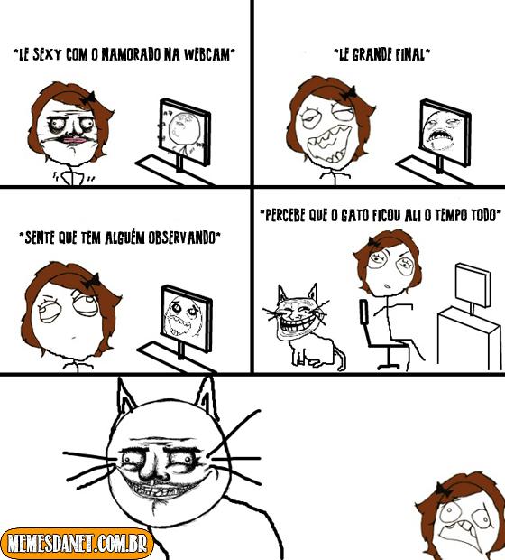 Gato safado
