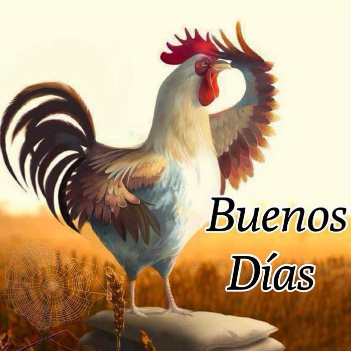 Buenos Dias, Imagenes y Fotos, parte 2
