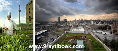 التهيئة الحضرية والريفية: أزمة المدينة والريف وأشكال التدخل