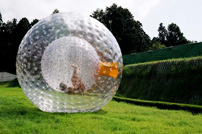 zorbing in karjat at mohili meadows