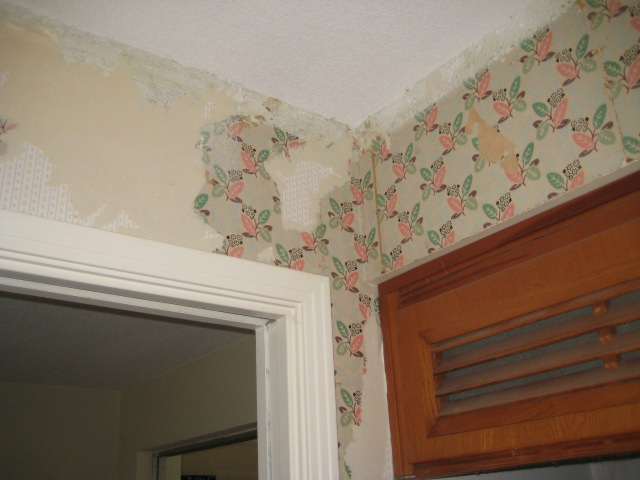 The Frugal Mennonite Removing Old Wallpaper