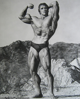 Arnold Schwarzenegger Drawing, original artwork, portrait artist, celebrity art, charcoal drawing, charcoal artist