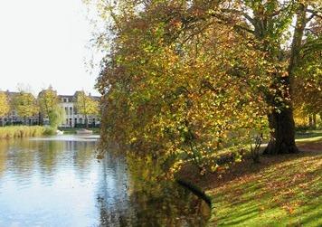 Leiderdorp river bank