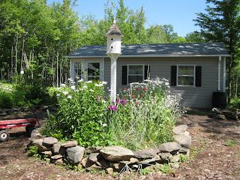 Mid Summer Garden