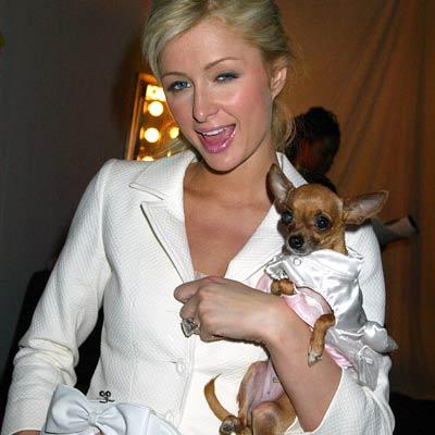 Paris Hilton Pictures