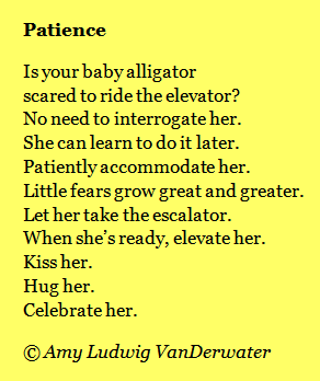 funny rhyming poems for adults