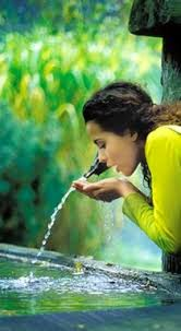 Cuando bebas agua, recuerda la fuente. Proverbio chino