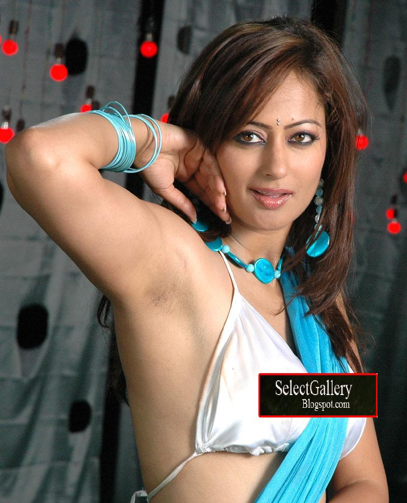 photo gallery tamil telugu bollywood hollywood hot videos kissing