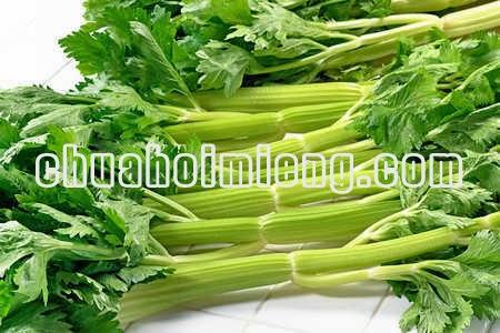 chua-hoi-mieng-trao-nguoc-axit-1