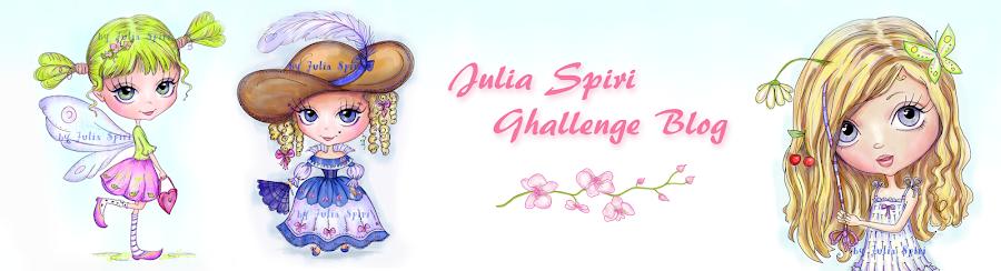 Julia Spiri Challenge Blog