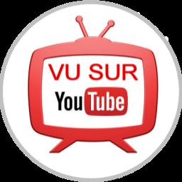 Vu sur Youtube : Feux de signalisation au sol pour smombies