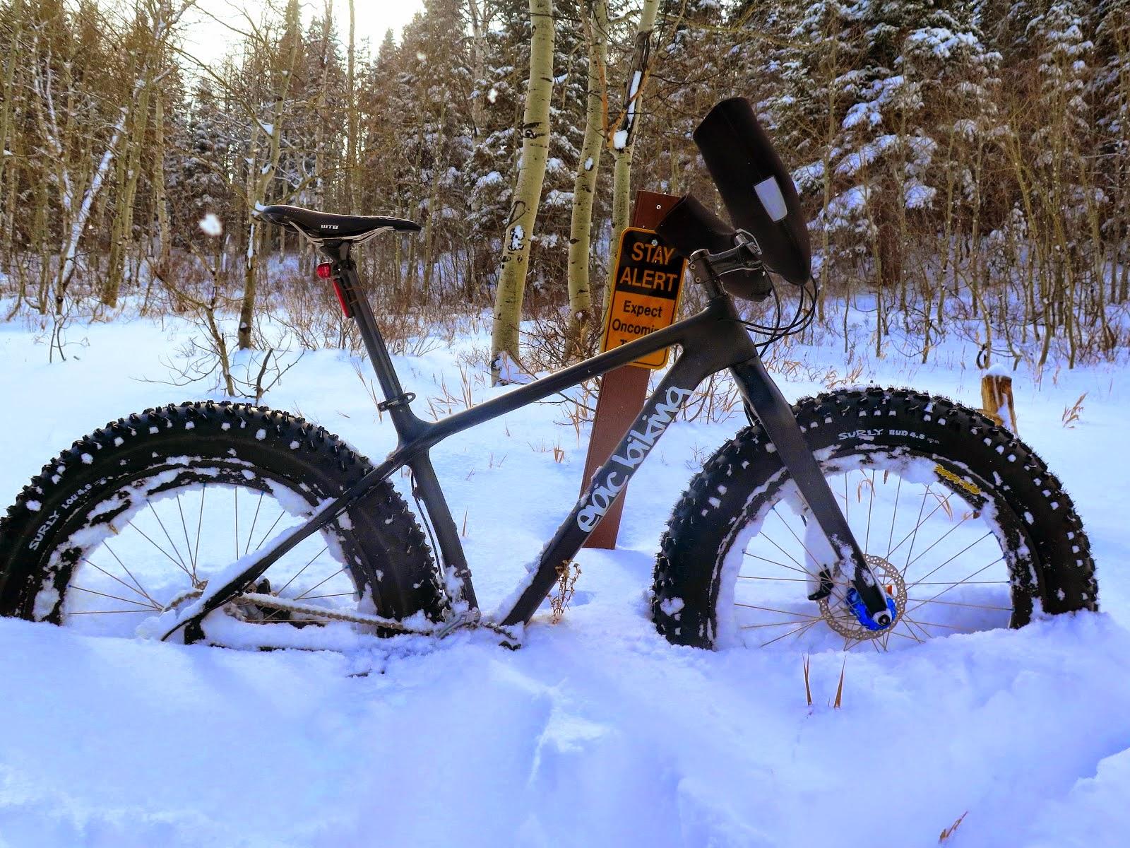 South Pole Bikes