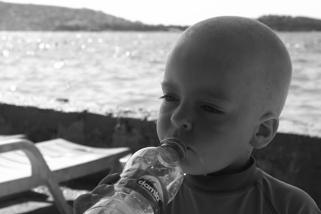 Our little baldy drinking.