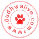Dudhwa Live Logo