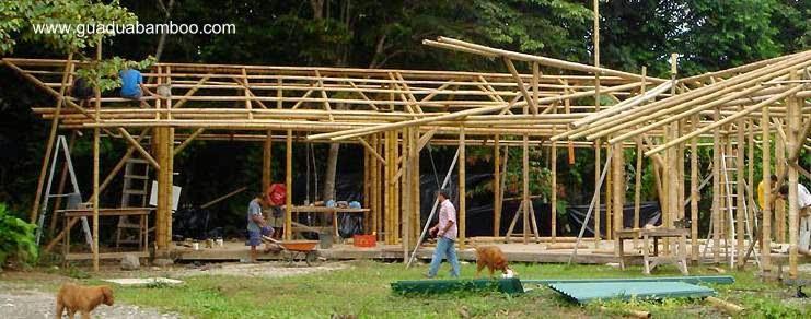 Construcción con cañas de bambú Guadua
