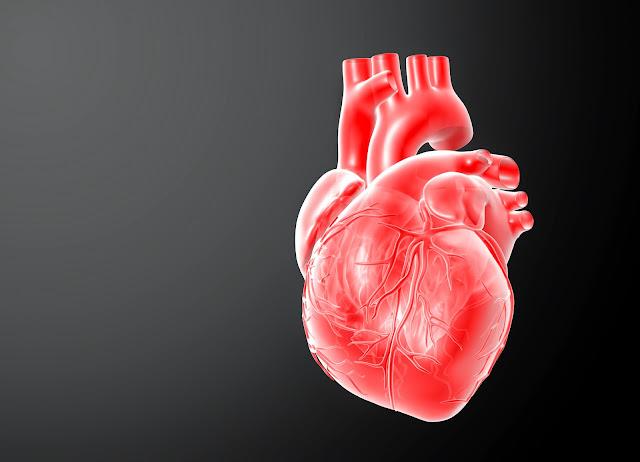 ICP Capsule Obat Herbal penyakit Jangtung bengkak