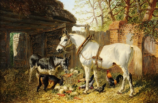 Yağlı boya at eşek keçi ve tavuk resimleri
